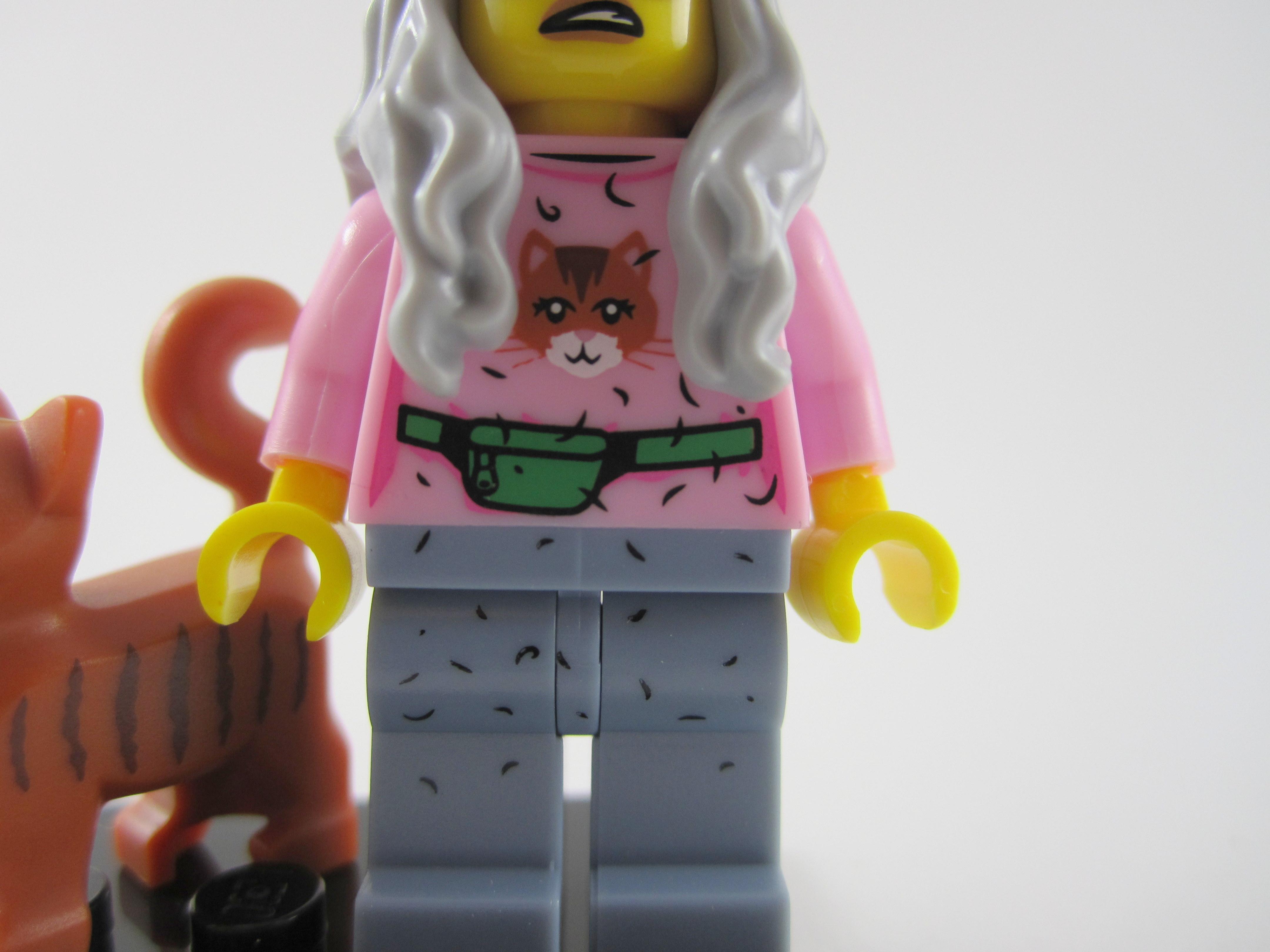 Lego Movie Mrs Scratchen Post Shirt