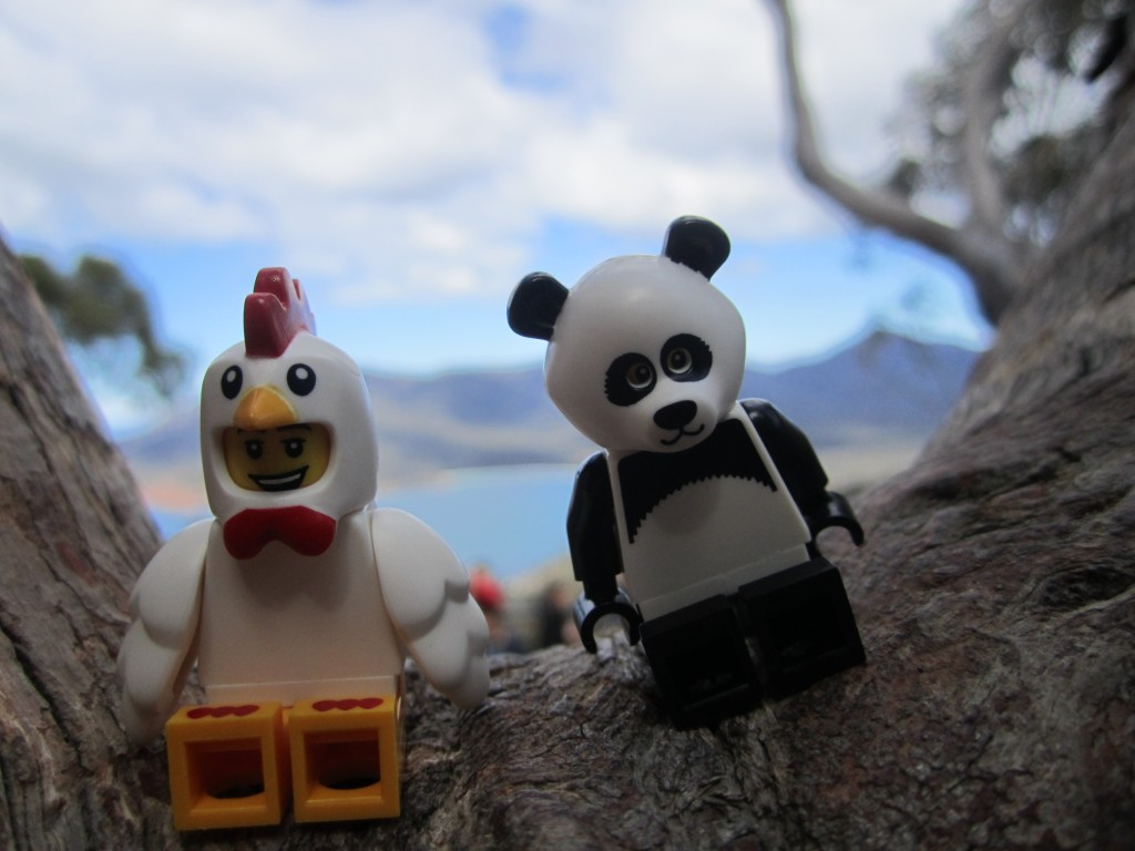 LEGO Adventures in Tasmania 2014 (22)