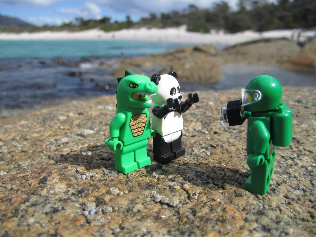 LEGO Adventures in Tasmania 2014 (30)