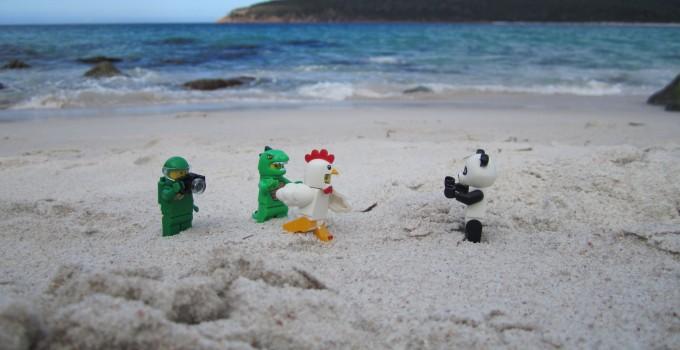 LEGO Adventures in Tasmania