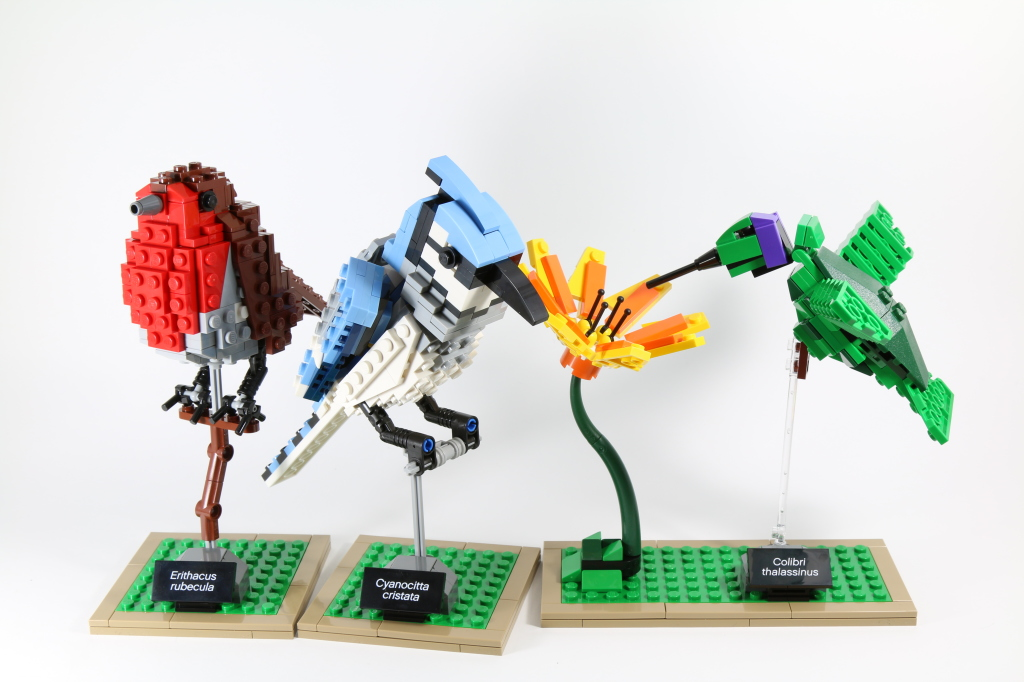 Review: LEGO Ideas 21301 Birds