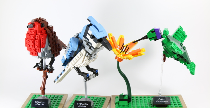 Review: LEGO Ideas 21301 Birds