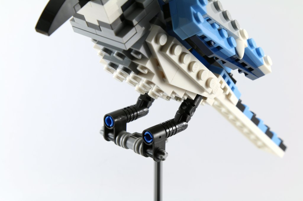 LEGO 21301 Birds - Blue Jay Talons