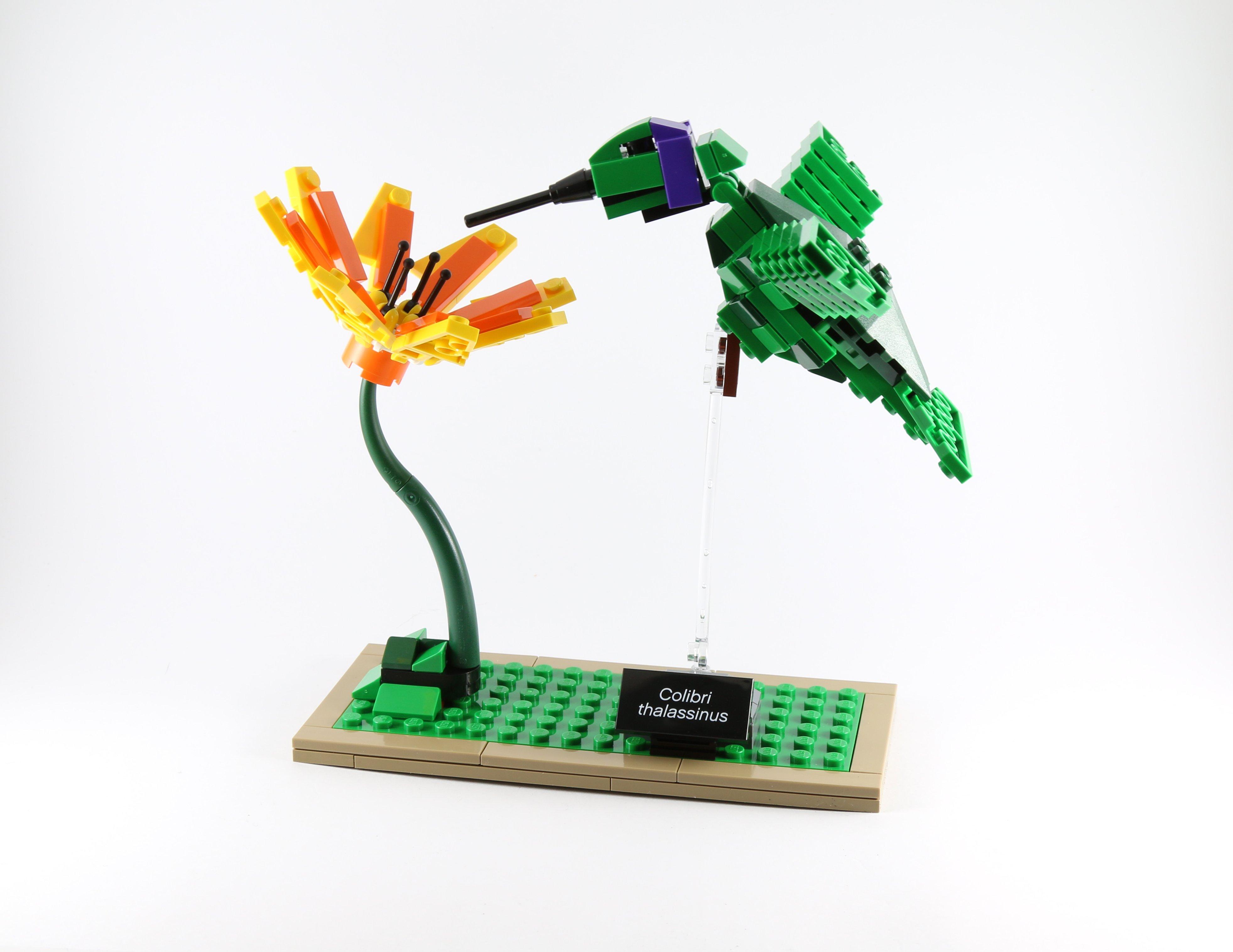 Review Lego Ideas 21301 Birds