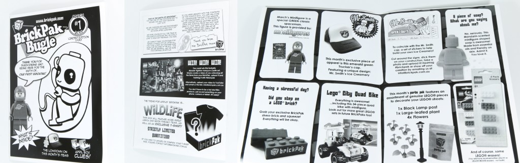 Brickpak March - Leaflet