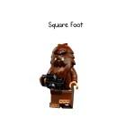 Square Foot (Bigfoot)