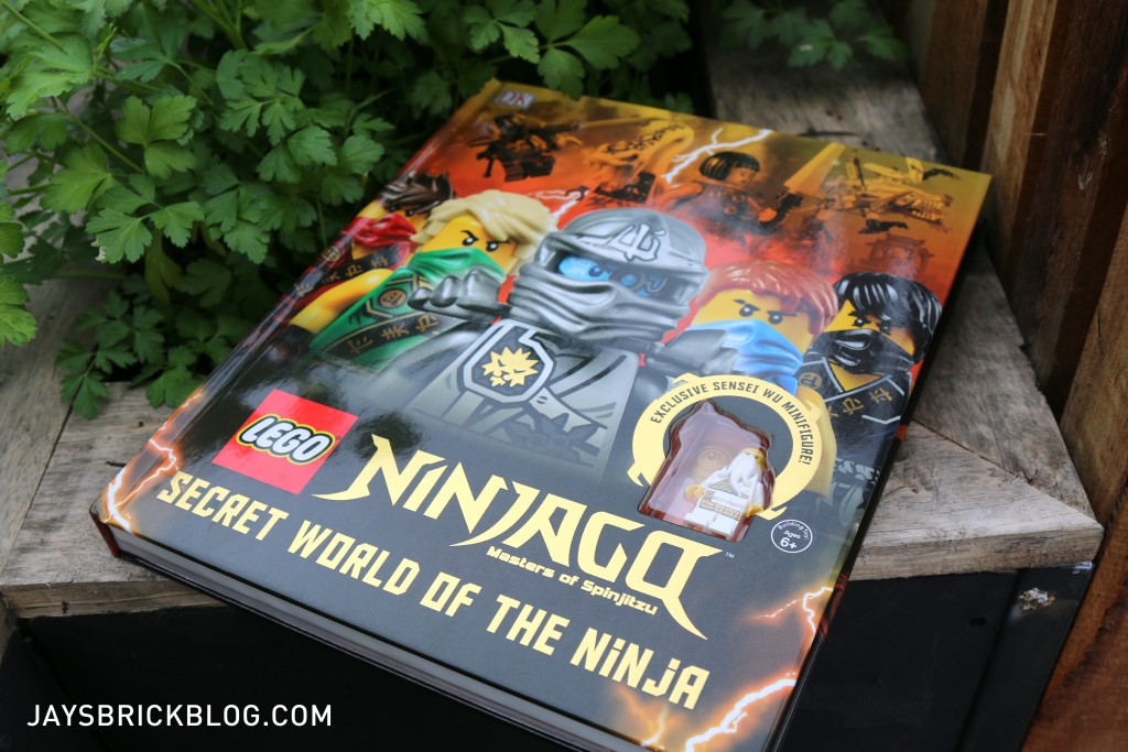 Ninjago Secret World of the Ninja