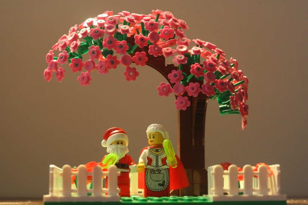 LEGO Valentines Day 2016 - Mr and Mrs Claus