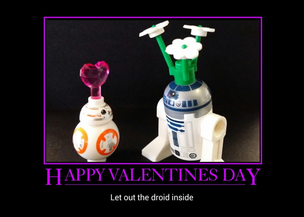 LEGO Valentines Day 2016 - Robbywings
