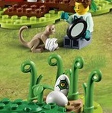 LEGO City Egg Hatching and Monkey Bandage
